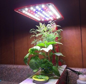 Miracle Grow Aeroponic Indoor Garden