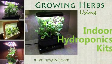 5 Best Budget Indoor Hydroponics Kits for Growing Your Home Herb Garden 2017